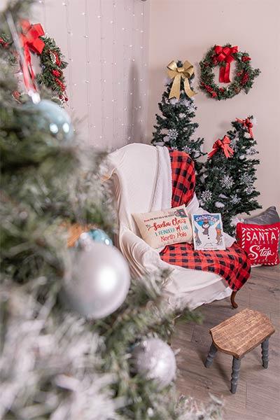 Professional Family Photos with Santa Dan 002