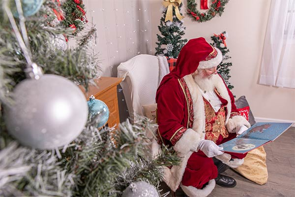 Tamales for Santa? By Santa's Elf, M. N. SNow